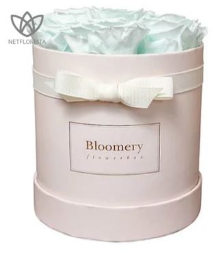 Minty Green Flowerbox Medium