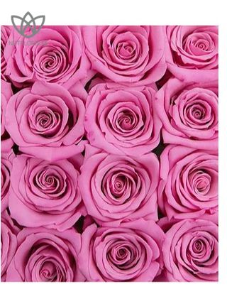 Forever Quadrata - small black cube box - pink and white infinity roses-2