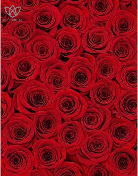 Forever Grande - large black round box - red infinity roses