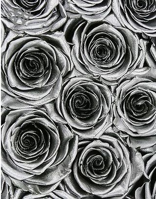 Forever Medio - medium black round box - silver infinity roses-1