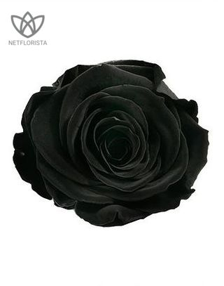 Forever Medio - medium black round box - red and black infinity roses-3