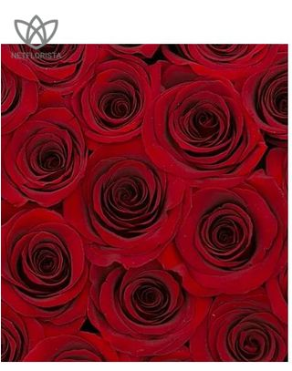 Forever Medio - medium black round box - red infinity roses-2