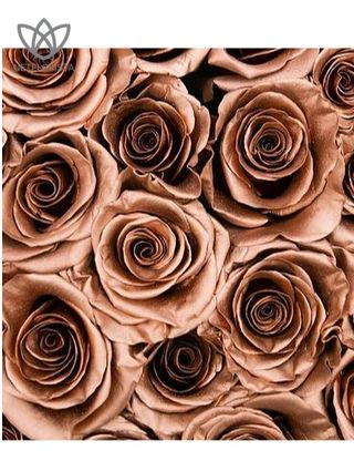 Forever Medio - medium black round box - copper infinity roses-1