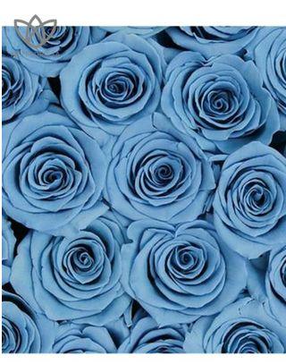 Forever Medio - medium black round box - light blue infinity roses-1
