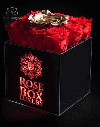 Gold n Red mini box-1