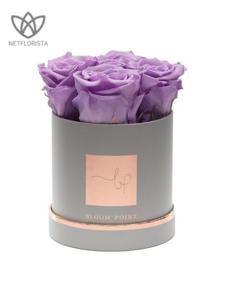 ROSENBOX S Light purple