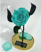 FLOWER DOME | GOLD EDITION | CYAN