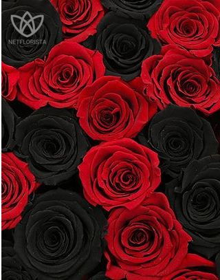 Forever Medio - medium white or black round box - red and black infinity roses