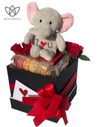 Plush Elephant with Macaron Selection and ILOVEYOU chocolate